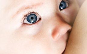 Как часто кормить новорожденного ребенка