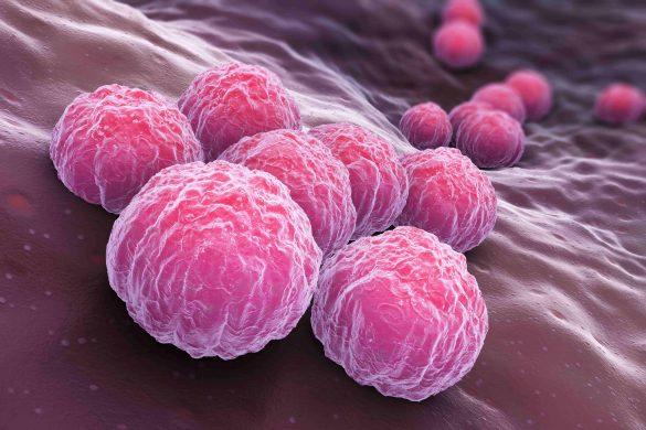 Лечение онкологии: ученые изобрели новое средство лечения рака, состоящее из радиоактивных частиц и яда