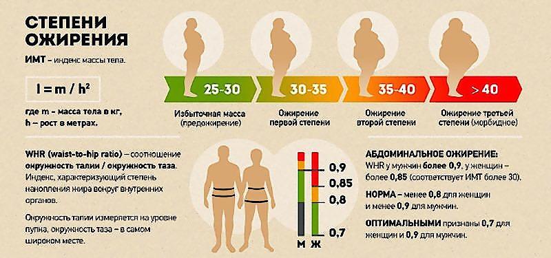 Как определить степень ожирения у мужчины?